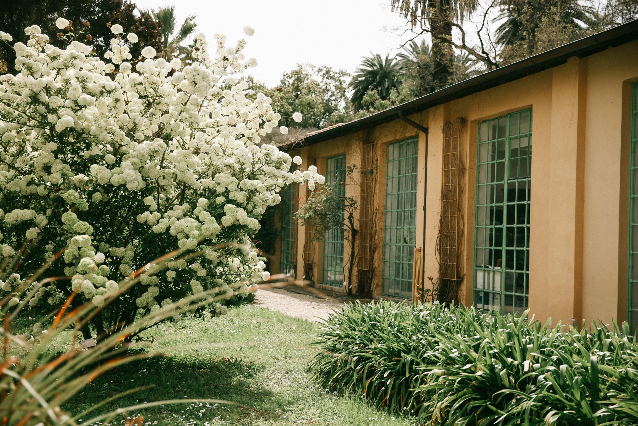 modelsjam-travels-botanic-garden-rome-9489