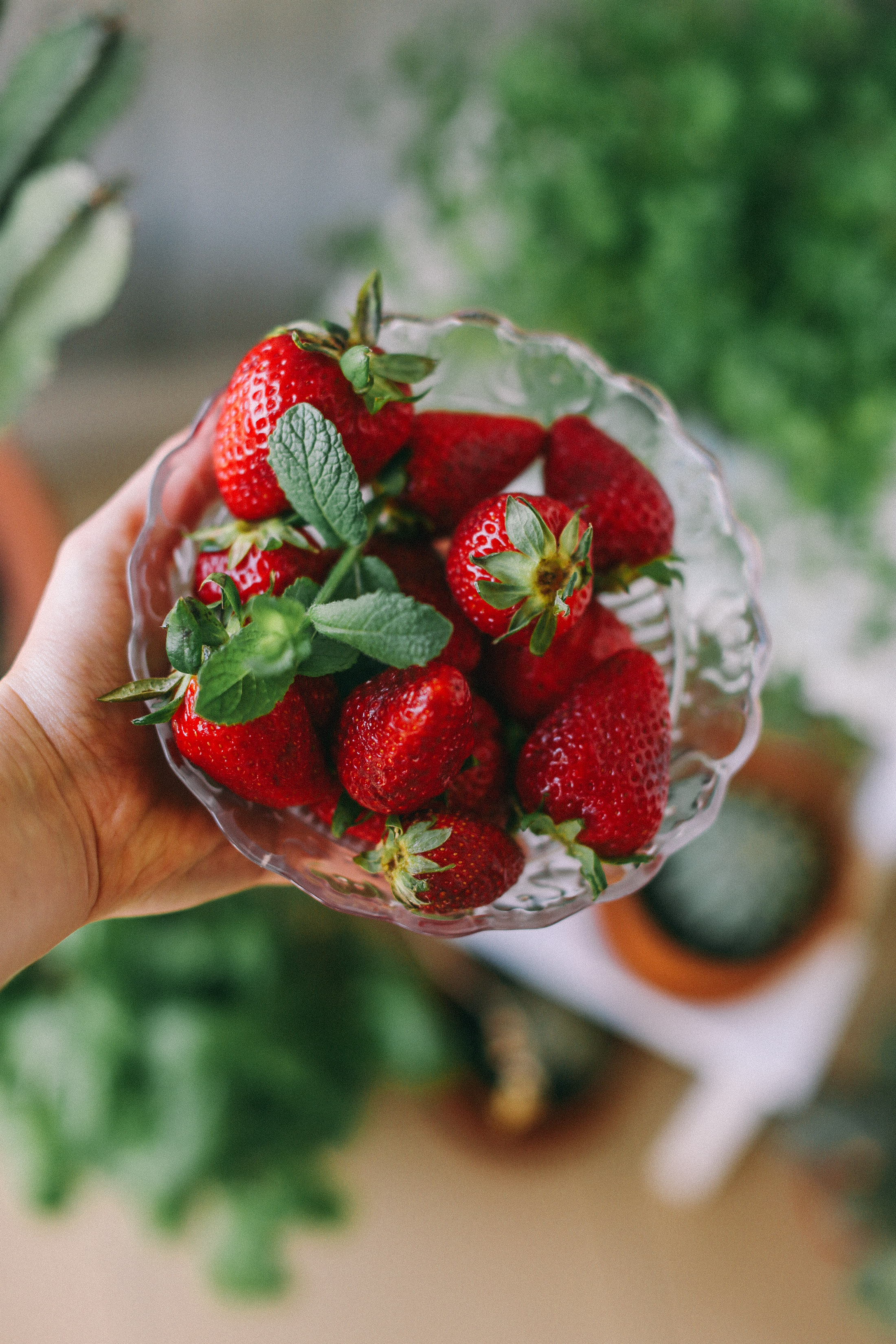 strawberry-mint-salad-recipe-summer